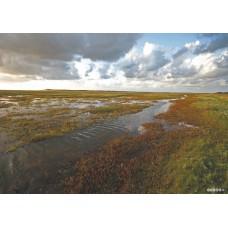 De Slufter Texel print op canvas